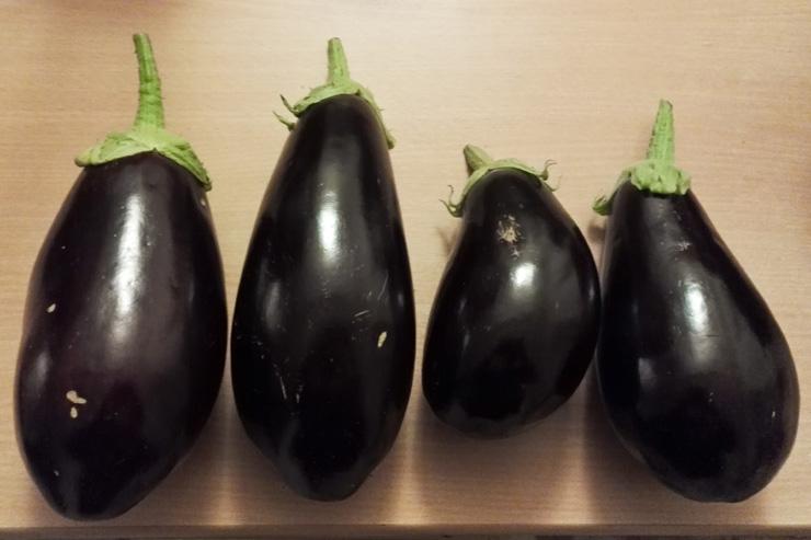 4 aubergines du jardin