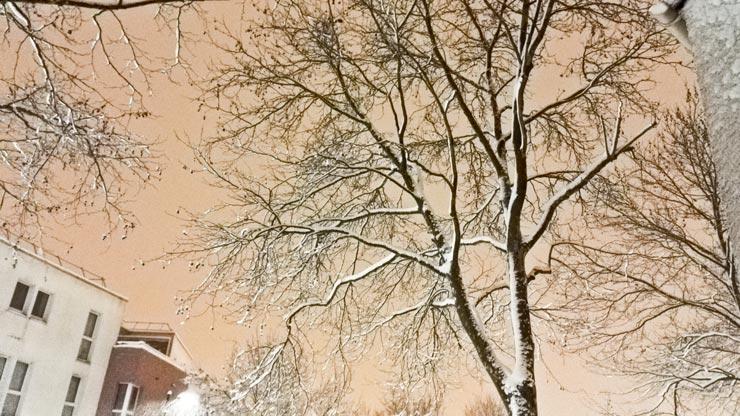 Neige à Voisins le Bretonneux
